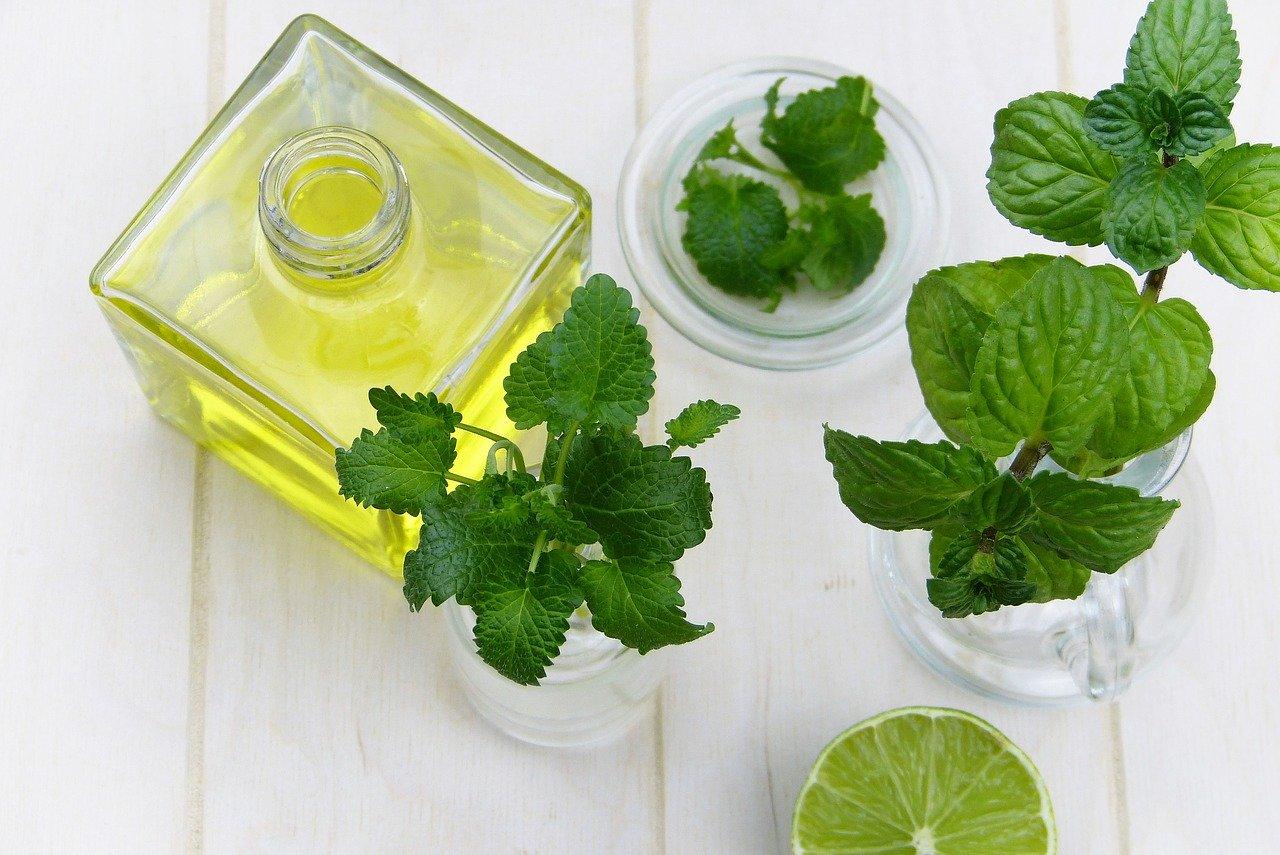 ハッカ油で掃除がおすすめ!防虫・消臭・殺菌効果。清涼感がたまらない。